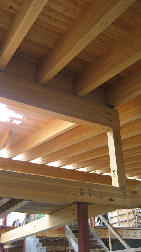 Load Bearing Capacity Laminated Beams ~ Glulam to steel knife plate connection with countersunk