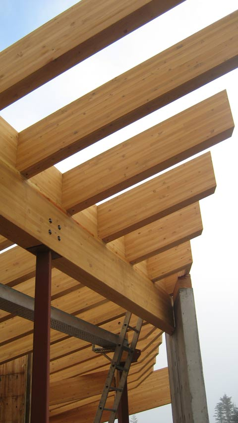 glulam-framing-over-steel-columns
