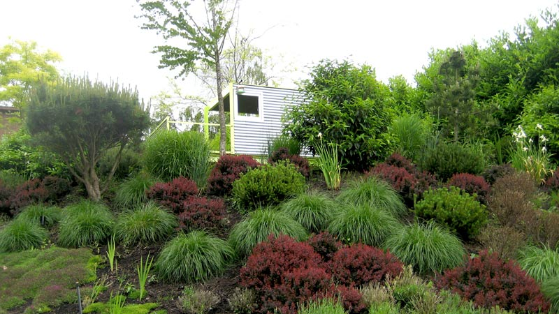 fescue-grasses-hill-landscaping