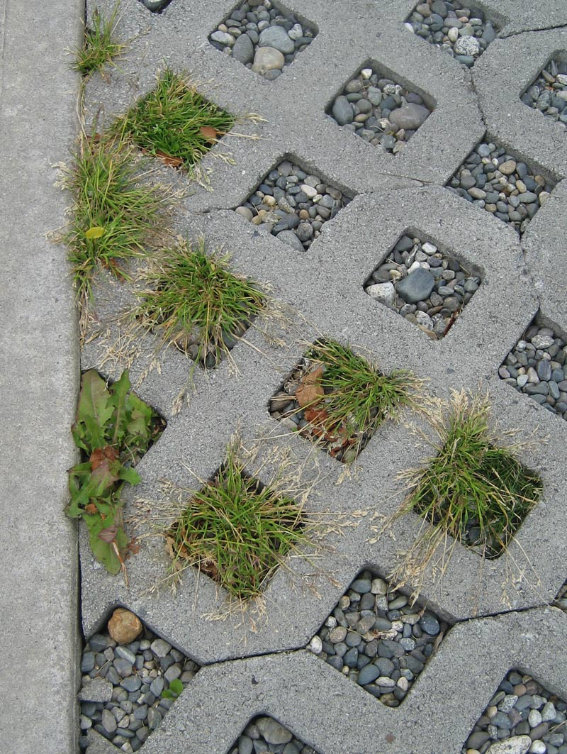 grass-pavers-filled-in-with-grass-and-pebbles