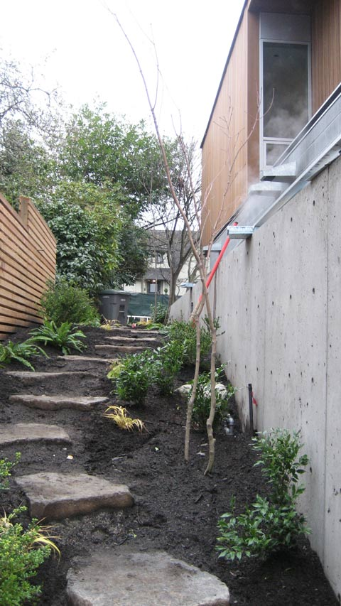 sideyard-garden-stones