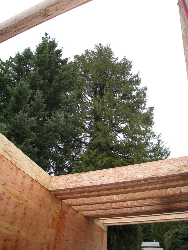 West Van Floor Framing Home Building In Vancouver