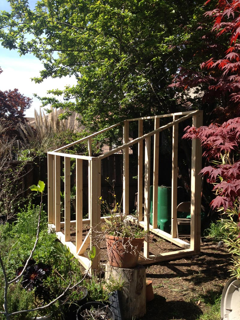 GREEN-HOUSE-CONSTRUCTION----wall-framing-2