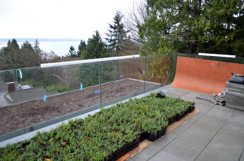 GREEN-ROOF-PREPPED-UP-FOR-PLANTING